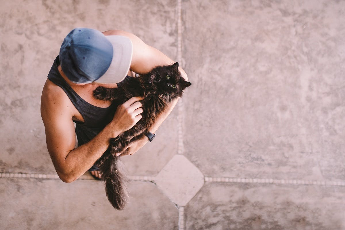 A man wearing a baseball cap holds a black and brown long-haired cat