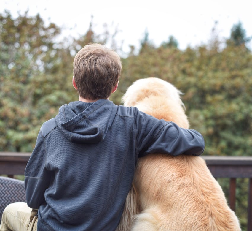 A boy sits with his arm around his Golden Retriever