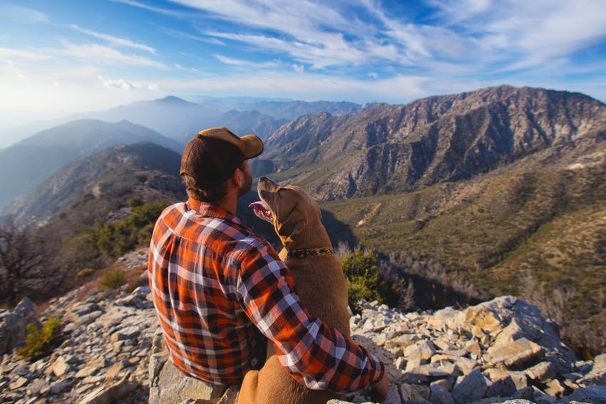 A man wearing a plaid shirt sit with his dog overlooking the mountains