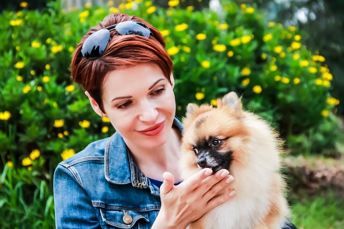 Woman holding her Pomeranian that licks her hand