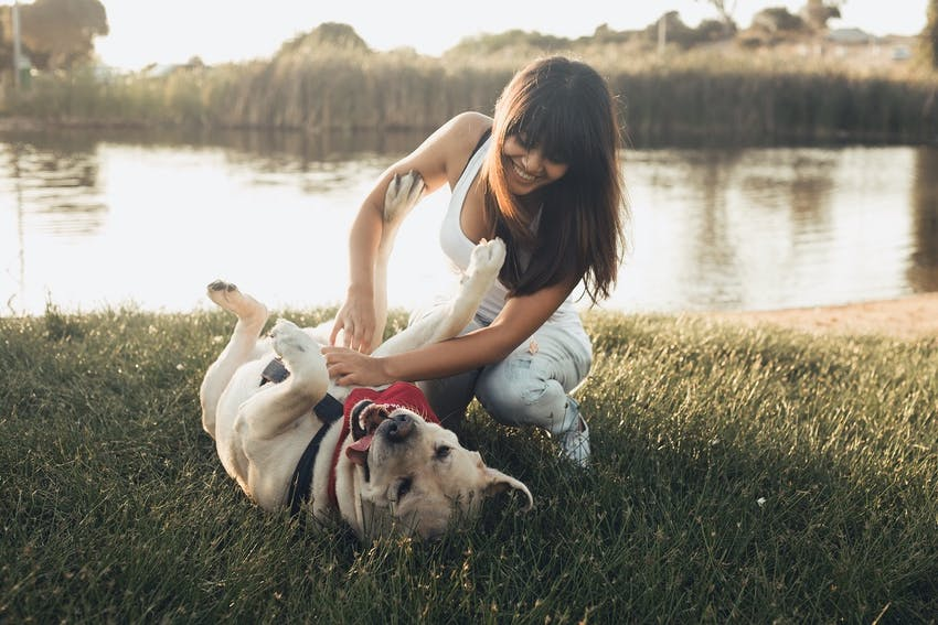 A woman rubs the belly of her dog in the park