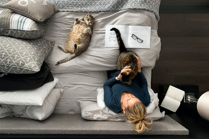 A woman works from her bed with two cats by her side